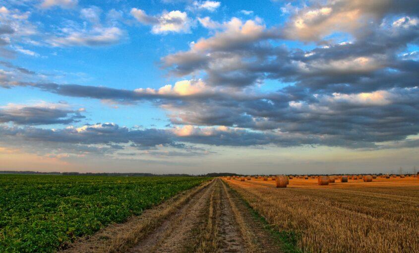 Poljoprivredno zemljište cene